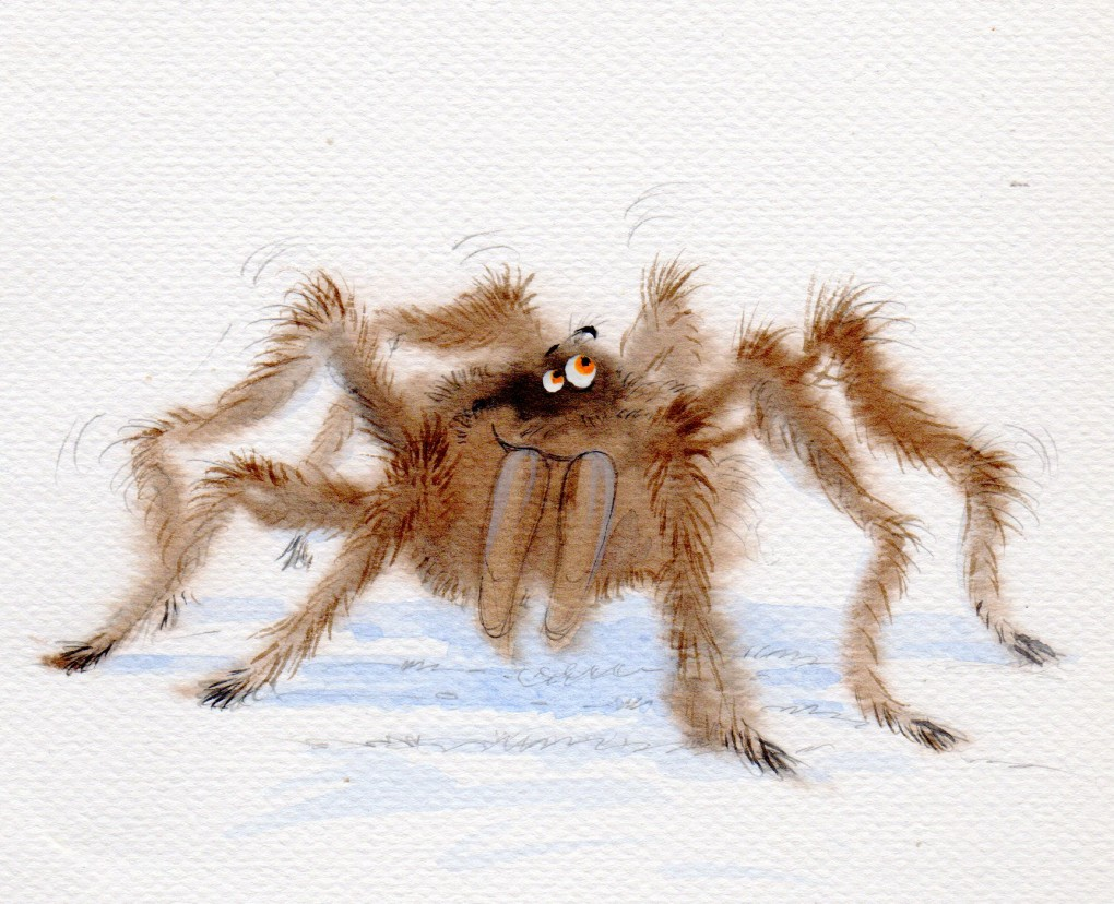 Harry Hirsuite, the baboon spider, art by David Bailey